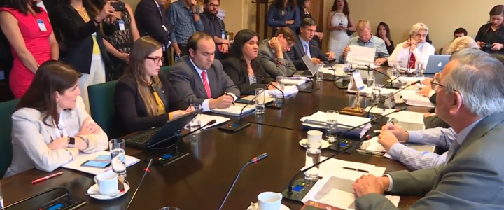 Fundación Jaime Guzmán expone en Comisión por Ley de Identidad de Género