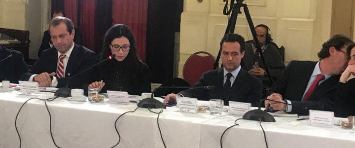 Macarena Bravo expuso sobre Financiamiento Solidario en el Senado
