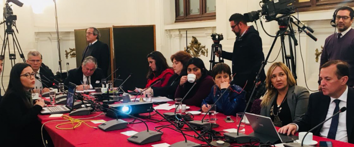 Macarena Bravo expuso en comisión investigadora del CAE